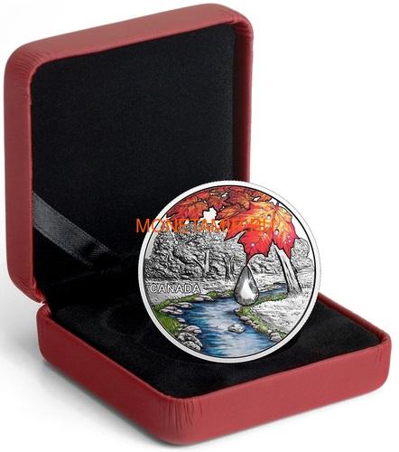 Канада 20 долларов 2017 Клен – Хрустальная капля (Canada 20C$ 2017 Jewel of the Rain Sugar Maple Leaves Swarovski).Арт.000554254478/60 (фото, вид 2)