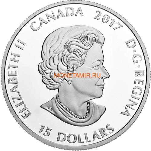 Канада 15 долларов 2017 Ушастая Сова (Canada 15$ 2017 Glow-In-The-Dark Coin Great Horned Owl).Арт.60 (фото, вид 3)