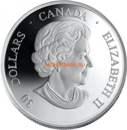 Канада 30 долларов 2006 Канадарм Крис Хэдфилд Космос Голограмма (Canada 30$ 2006 Canadarm Space Hologram).Арт.000462254326/60 (фото, вид 1)