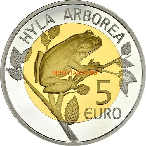 Люксембург 5 евро 2017 Лягушка Hyla Arborea - Флора и фауна Люксембурга (Luxembourg 5 Euro 2017 Frog Hyla Arborea).Арт.60 (фото, вид 1)