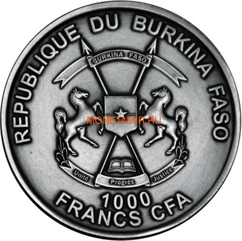 Буркина Фасо 1000 франков 2017 Морские Ежи – Мир эволюции (Burkina Faso 1000FCFA 2017 Echinoidea Fossil Sea Urchin World of Evolution).Арт.60 (фото, вид 2)