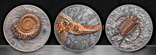 Монголия 500 тугриков 2017 Ихтиозавр Эволюция (Mongolia 500T 2017 Ichthyosaur Evolution 1oz Silver).Арт.60 (фото, вид 7)