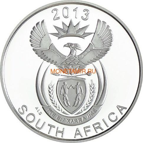 Южная Африка 5 центов 2013 Рыба Клоун серия Охрана морских территорий (South Africa 5c 2013 Marine Protected Areas Clownfish).Арт.000235444021/60 (фото, вид 1)