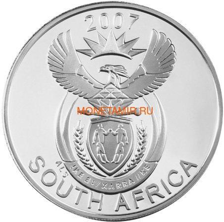 Южная Африка 20 центов 2007 Лев и Сурикат – Парки Мира (South Africa 20c 2007 Peace Parks Great Mapungubwe Lion and Meerkat).Арт.60 (фото, вид 1)