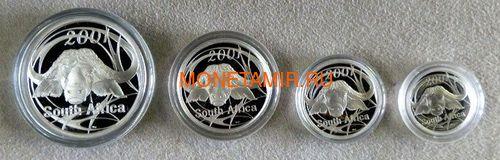 Южная Африка 85 центов 2001 Африканский Буйвол серия Дикая природа, Набор 4 монеты (South Africa 85c 2001 Wildlife Series Limited Edition Set Of African Buffalo).Арт.000919341613/60 (фото, вид 2)