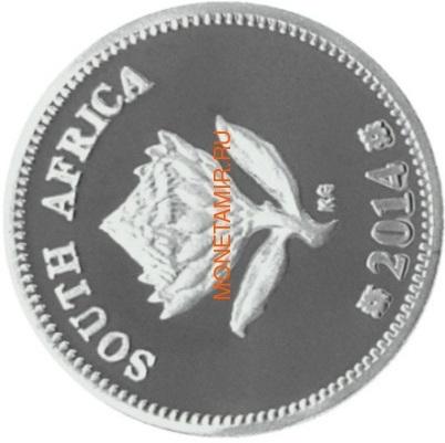 Южная Африка 2 ранда + 2,5 цента 2014 Электровоз – Поезда Южной Африки Набор из двух монет (Silver Proof Combo Set R2 and 2,5c 2014 South Africa Trains of South Africa Gautrain).Арт.001332650459/60 (фото, вид 4)