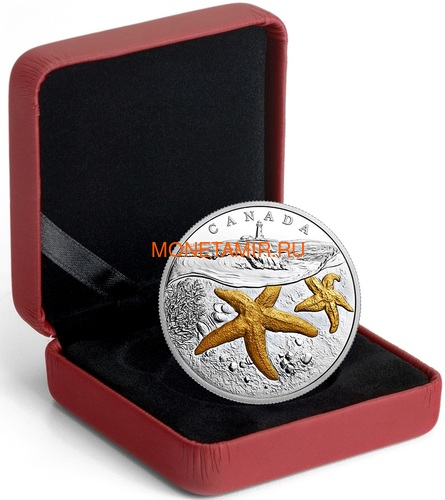 Канада 20 долларов 207 Атлантическая морская звезда Маяк (Canada 20C$ 2017 From Sea To Sea Atlantic Starfish).Арт.60 (фото, вид 2)