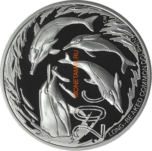 Южная Африка 85 центов 2014 Акулы Дельфины Black Musselcracker Аммонит Морские животные Охрана морских территорий Набор 4 монеты (South Africa 85c 2014 Marine Areas 4 coin Prestige Set).Арт.002073850461/60 (фото, вид 2)