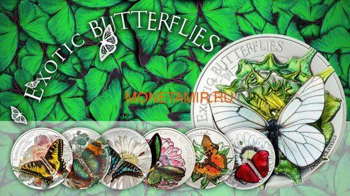 Палау 20 долларов 2018 Экзотические Бабочки 3D (Palau 20$ 2018 Exotic Butterflies Dream Edition 3D).Арт.60 (фото, вид 6)