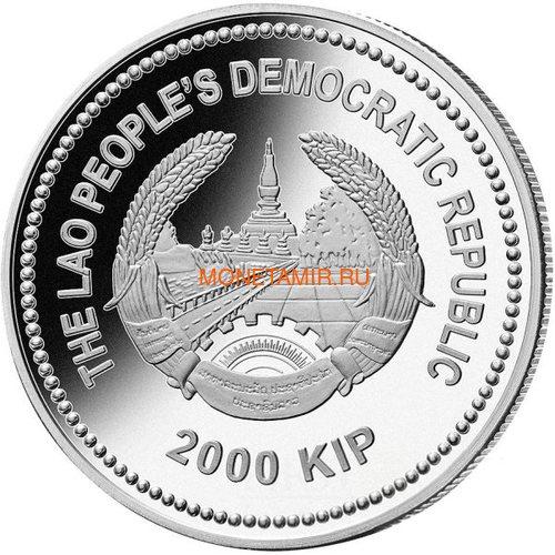 Лаос 2000 кип 2013 Год Змеи Лунный календарь (Нефрит).Арт.000592541075/60 (фото, вид 1)