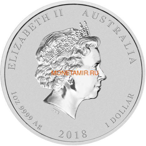 Австралия 1 доллар 2018 Сова Поздравление Выпускникам (Australia 1$ 2018 Owl Congradulations).Арт.60 (фото, вид 1)