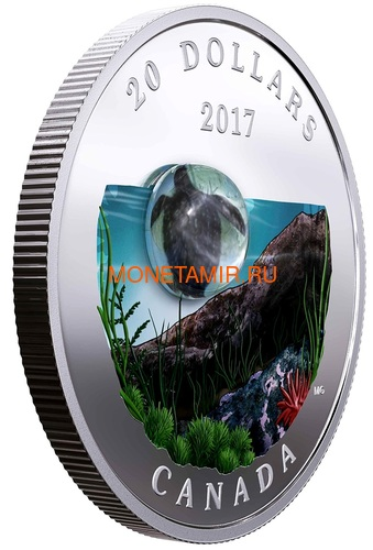Канада 20 долларов 2017 Морская Черепаха серия Под водой 3D Капля (Canada 20C$ 2017 Under the Sea Sea Turtle).Арт.60 (фото, вид 1)