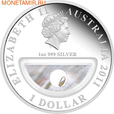 """""""Сокровища Австралии"""" (с инкапсулированной жемчужиной). Арт: 000139134587 (фото, вид 1)"""