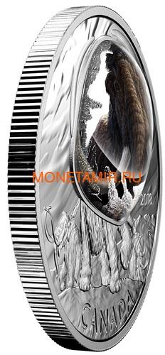 Канада 20 долларов 2018 Шерстистый Мамонт Замороженные во Льду (Canada 20C$ 2018 Frozen in Ice Woolly Mammoth).Арт.000480556116/63 (фото, вид 1)