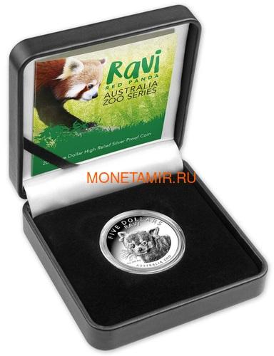 Австралия 5 долларов 2018 Красная Панда - Зоопарк (Australia 5$ 2018 Zoo Series Ravi Red Panda).Арт.60 (фото, вид 2)