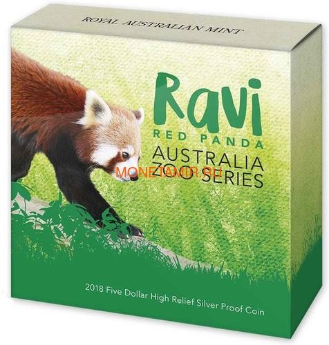 Австралия 5 долларов 2018 Красная Панда - Зоопарк (Australia 5$ 2018 Zoo Series Ravi Red Panda).Арт.60 (фото, вид 3)