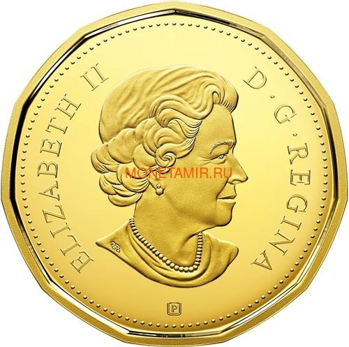 Канада 2018 набор монет Капитан Кук Залив Нутка Корабль Медведь Утка Олень Бобр (Canada 2018 Special Edition Silver Dollar Proof Set 240th Anniversary of Captain Cook at Nootka Sound).Арт.60 (фото, вид 6)