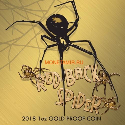 Ниуэ 100 долларов 2018 Красноспинный Паук Международная Версия (Niue 2018 $100 Deadly & Dangerous Red-Back Spider 1oz Gold Proof Export Edition International Version).Арт.63 (фото, вид 4)