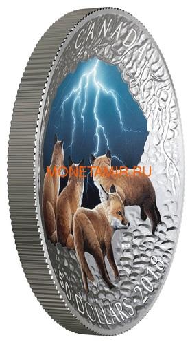 Канада 50 долларов 2018 Лисы Ночная Гроза Молния Природные Явления (Canada 50C$ 2018 Nature's Light Show Stormy Fox Night Glow-in-the-Dark Coin) Выпуклая форма.Арт.64 (фото, вид 1)