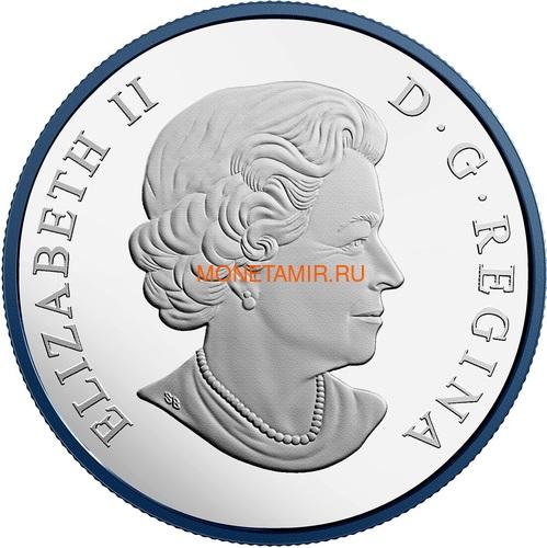 Канада 30 долларов 2018 Большая Белая Акула Родий (Canada 30$ 2018 Great White Shark Blue Rhodium Plating 2oz Silver Coin).Арт.69 (фото, вид 1)