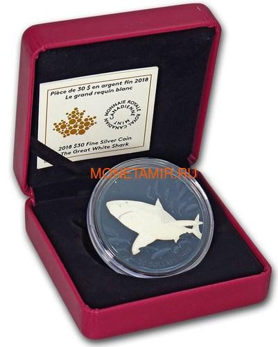 Канада 30 долларов 2018 Большая Белая Акула Родий (Canada 30$ 2018 Great White Shark Blue Rhodium Plating 2oz Silver Coin).Арт.69 (фото, вид 3)