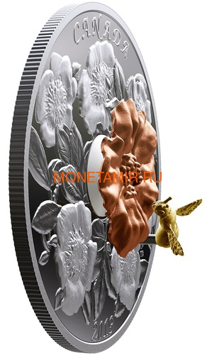 Канада 50 долларов 2019 Шмель Цветок Роза (Canada 50$ 2019 Bumble Bee and the Bloom Silver Coin 5oz).Арт.69 (фото, вид 1)