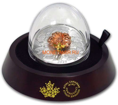 Канада 50 долларов 2019 Шмель Цветок Роза (Canada 50$ 2019 Bumble Bee and the Bloom Silver Coin 5oz).Арт.69 (фото, вид 7)