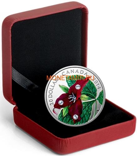 Канада 20 долларов 2014 Цветок Триллиум Прямостоячий Капля Дождя (Canada 20C$ 2014 Flower Trillium Raindrop Swarovski Silver Proof).Арт.000374548352/67 (фото, вид 2)
