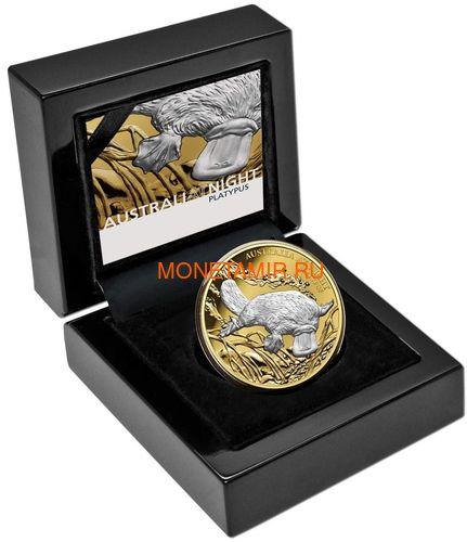 Австралия 100 долларов 2019 Ночная Австралия Утконос (Australia 100$ 2019 Australia at Night Platypus 1oz Gold Proof Coin).Арт.67 (фото, вид 3)