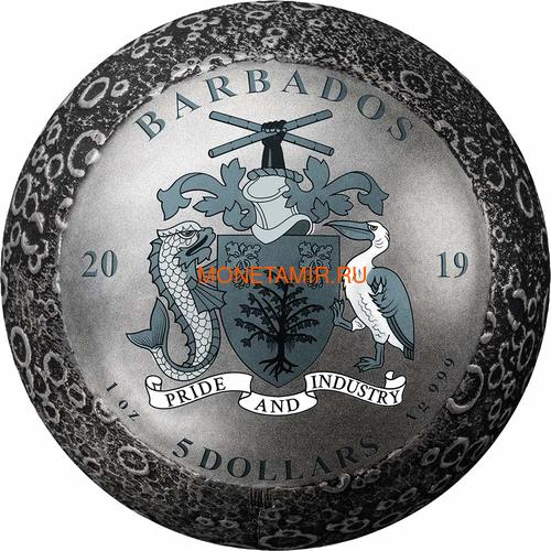 Барбадос 5 долларов 2019 Высадка на Луну 50 лет Космос Шар (Barbados 5$ 2019 Moon Landing 50th Anniversary 1 Oz Silver Coin Spherical).Арт.E82 (фото, вид 4)