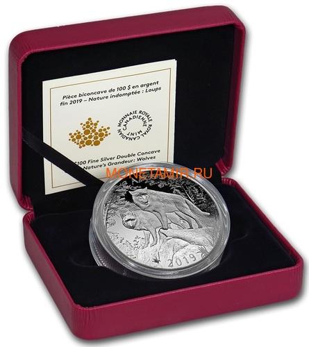 Канада 100 долларов 2019 Волки Величие Природы Выпуклая Двойная Толщина (Canada 100$ 2019 Wolves Nature's Grandeur Series Piedfort Concave 10 oz Silver Coin).Арт.67 (фото, вид 3)