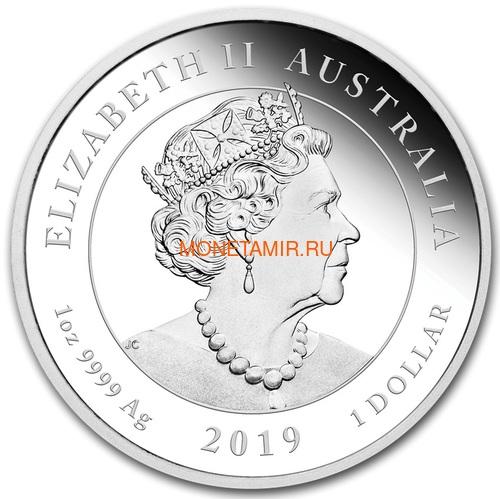 Австралия 1 доллар 2019 Высадка на Луну 50 лет Выпуклая Космос (Australia 1$ 2019 Moon Landing 50th Anniversary 1 oz Silver Coin).Арт.67 (фото, вид 2)