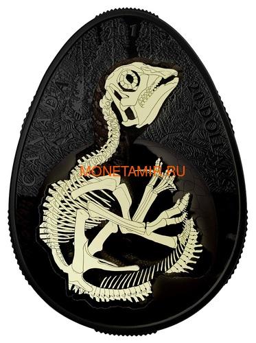 Канада 20 долларов 2019 Динозавр Гадрозавр (Canada 20$ 2019 Hatching Hadrosaur Glow-in-the-Dark Coin).Арт.67 (фото, вид 1)