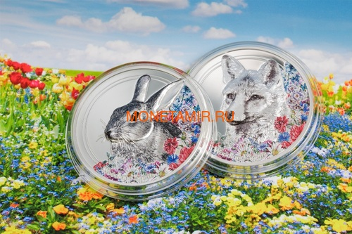 Монголия 500 Тугриков 2019 Заяц серия Woodland Spirits (Mongolia 500T 2019 Woodland Spirits Rabbit 1 oz Silver Coin).Арт.000392857126/65 (фото, вид 3)