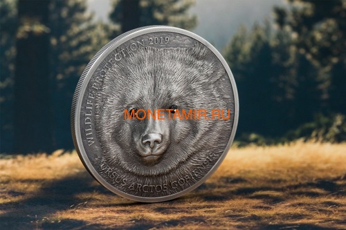 Монголия 500 Тугриков 2019 Гобийский Бурый Медведь Охрана Дикой Природы (Mongolia 500T 2019 Mongolian Gobi Bear Wildlife Protection 1oz Silver Coin).Арт.67 (фото, вид 1)