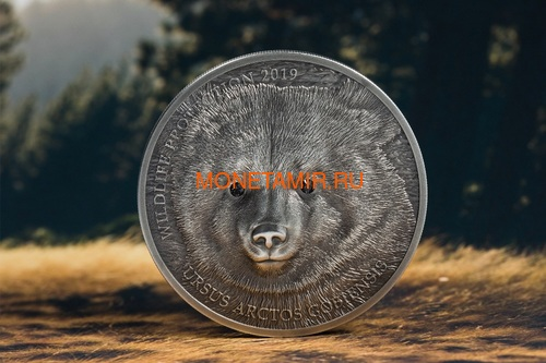 Монголия 500 Тугриков 2019 Гобийский Бурый Медведь Охрана Дикой Природы (Mongolia 500T 2019 Mongolian Gobi Bear Wildlife Protection 1oz Silver Coin).Арт.67 (фото, вид 2)