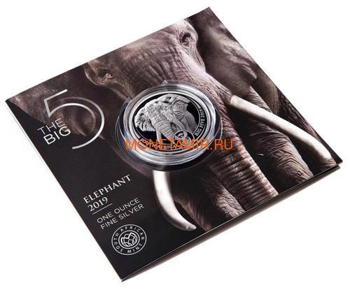 Южная Африка 5 рандов 2019 Слон Большая Африканская Пятерка (South Africa 5R 2019 Elephant Big Five 1 oz Silver Coin) Блистер.Арт.67 (фото, вид 2)