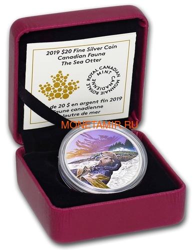 Канада 20 долларов 2019 Выдра Животные Канады (Canada 20$ 2019 Canadian Fauna The Otter Silver Coin).Арт.67 (фото, вид 2)