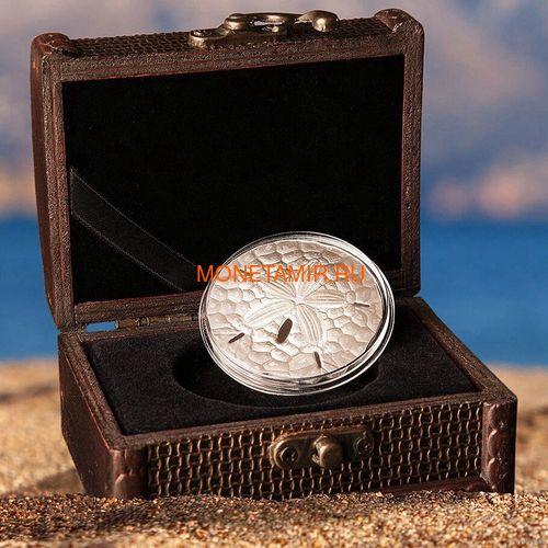Палау 1 доллар 2019 Песочный Доллар II (Palau 1$ 2019 Sand Dollar II).Арт.67 (фото, вид 3)