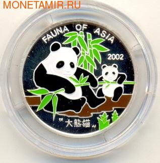 Панда с детенышем (фото)