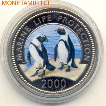2 пингвина (эмаль) (фото)
