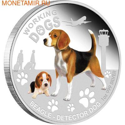 Тувалу 1 доллар 2011.Бигль серия Служебные собаки.Арт.000360434830/60 (фото)