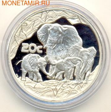 Слоны. Южная Африка 20 с 2002. (фото)