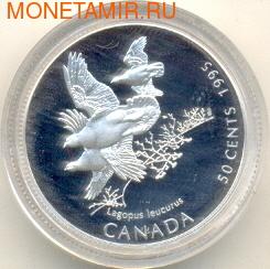 """Канада 50 центов 1995. Птицы. """"Атлантические пуффины"""""""
