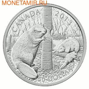 Канада 50 долларов 2013 Бобры.Арт.003143142054/60 (фото)