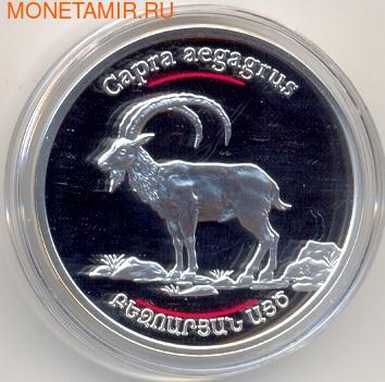 Армения 100 драм 2008. Горный козел. (фото)