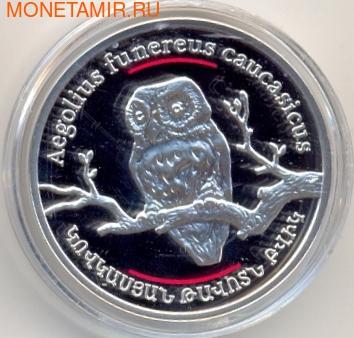 Армения 100 драм 2008. Кавказская сова. (фото)