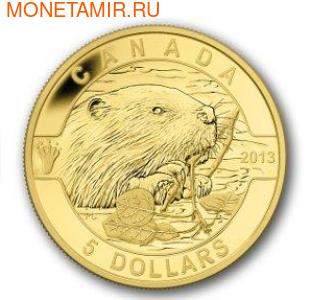 Канада 5 долларов 2013. Бобр (фото)