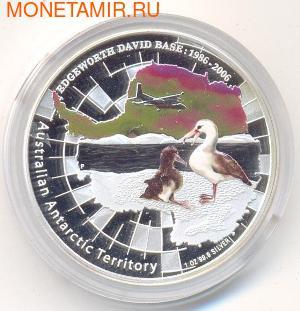 Австралийские Антарктические территории: Альбатрос. Австралия 1 доллар 2006. (фото)