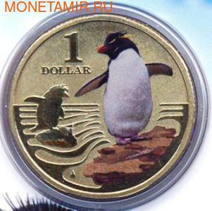 Серия «Полярные животные». Хохлатый пингвин. (фото)